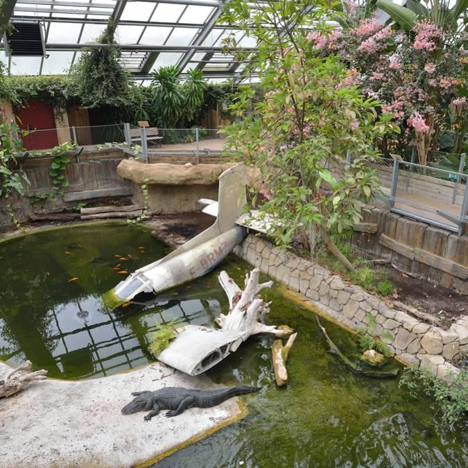 Planète des Crocodiles en Sud Vienne Poitou