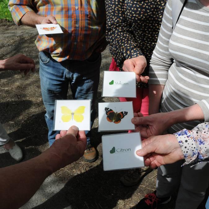 P'tite balade du Pays d'art et d'histoire en Sud Vienne Poitou